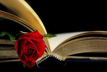 Lebst du schon oder liest du noch